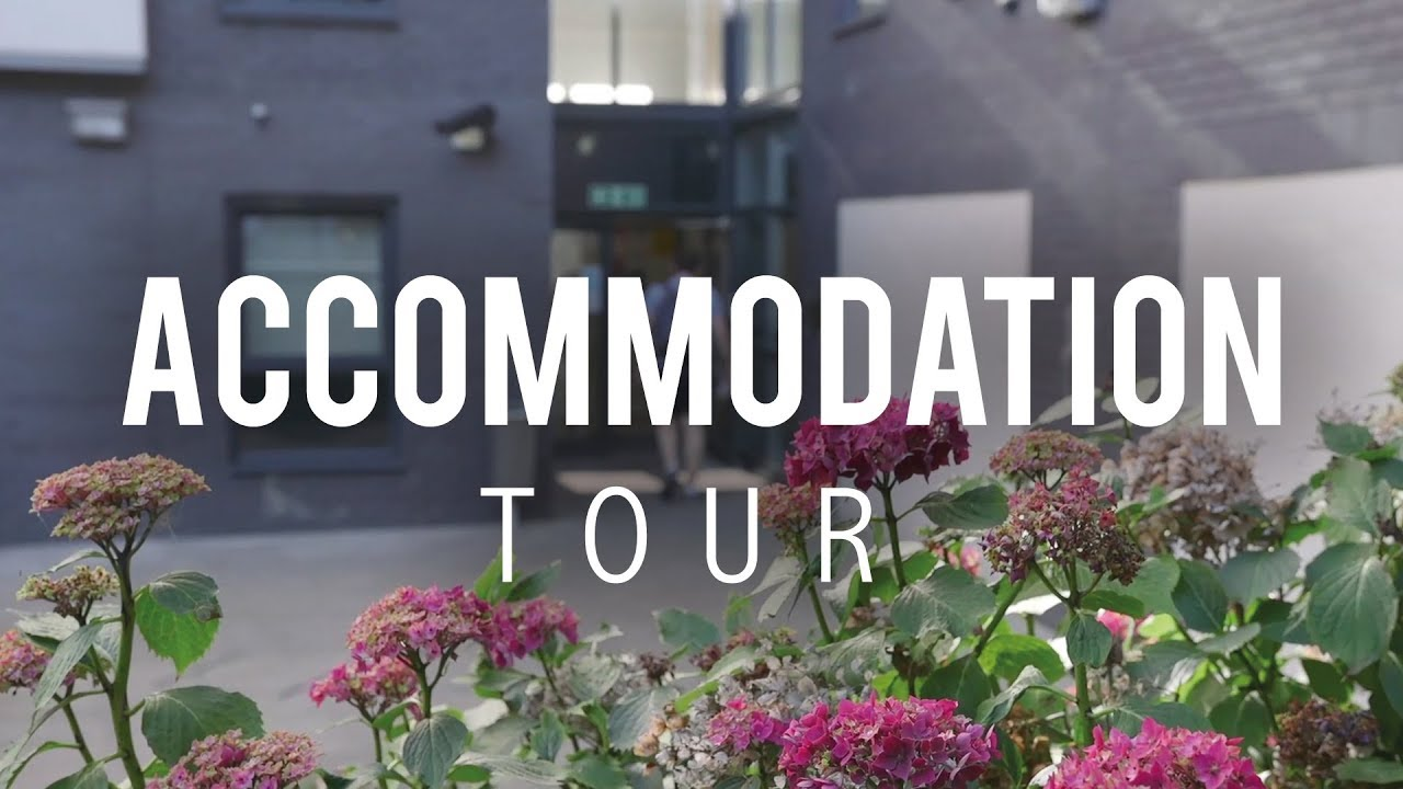 Accomodation tour City
